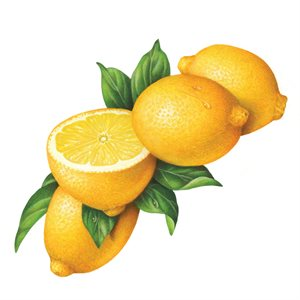 LEMON COMPOUND WITH PEEL