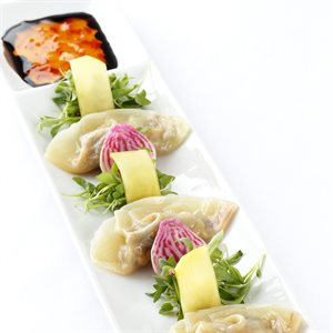 VIETNAMESE VEGETABLE POT STICKER