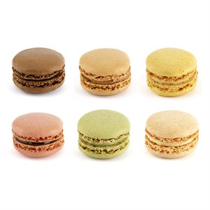 Versailles Macaron Collection (6 Flavors)