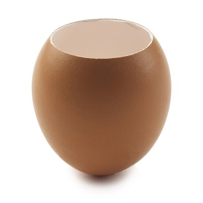 EGG SHELL, NATURAL BROWN