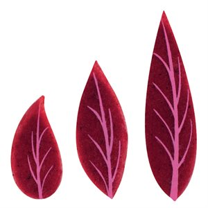 RED FRUIT APPLIQUE, LEAVES ASSORTMENT