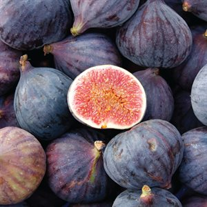 FIG COMPOUND, 1 KG
