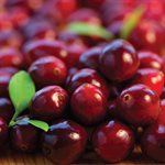 CRANBERRY COMPOUND, 1 KG