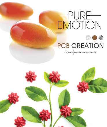 PCB-Pure-Emotion-06-2019